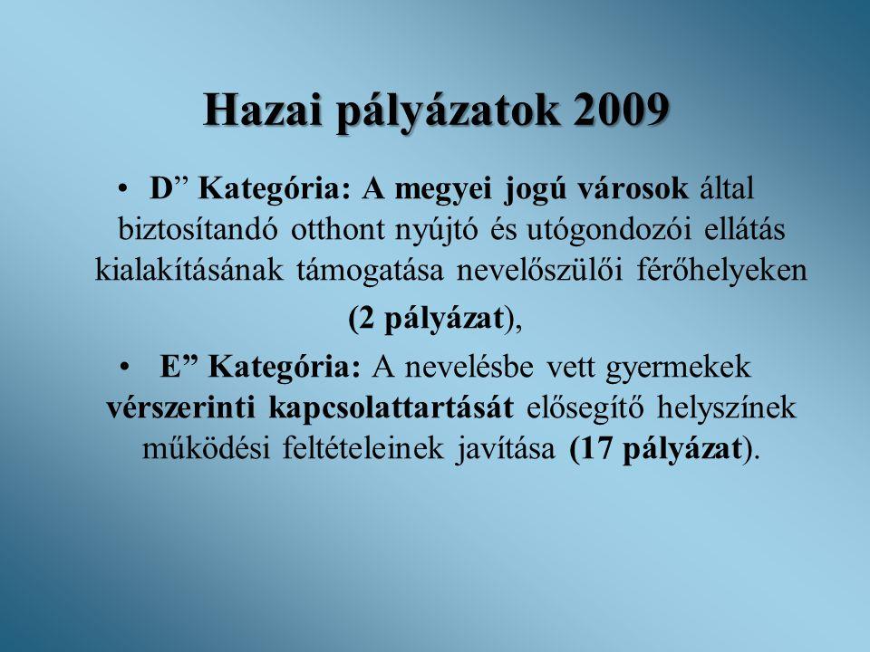 """Hazai pályázatok 2009 •D"""" Kategória: A megyei jogú városok által biztosítandó otthont nyújtó és utógondozói ellátás kialakításának támogatása nevelősz"""