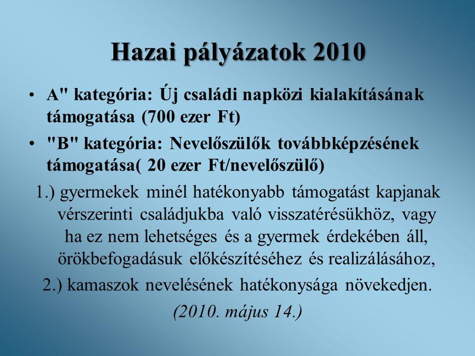 Hazai pályázatok 2010 •A
