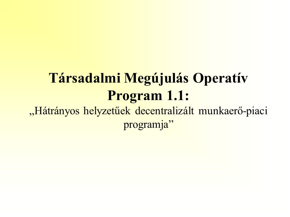 """Társadalmi Megújulás Operatív Program 1.1: """"Hátrányos helyzetűek decentralizált munkaerő-piaci programja"""""""