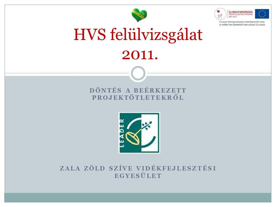 DÖNTÉS A BEÉRKEZETT PROJEKTÖTLETEKRŐL ZALA ZÖLD SZÍVE VIDÉKFEJLESZTÉSI EGYESÜLET HVS felülvizsgálat 2011.