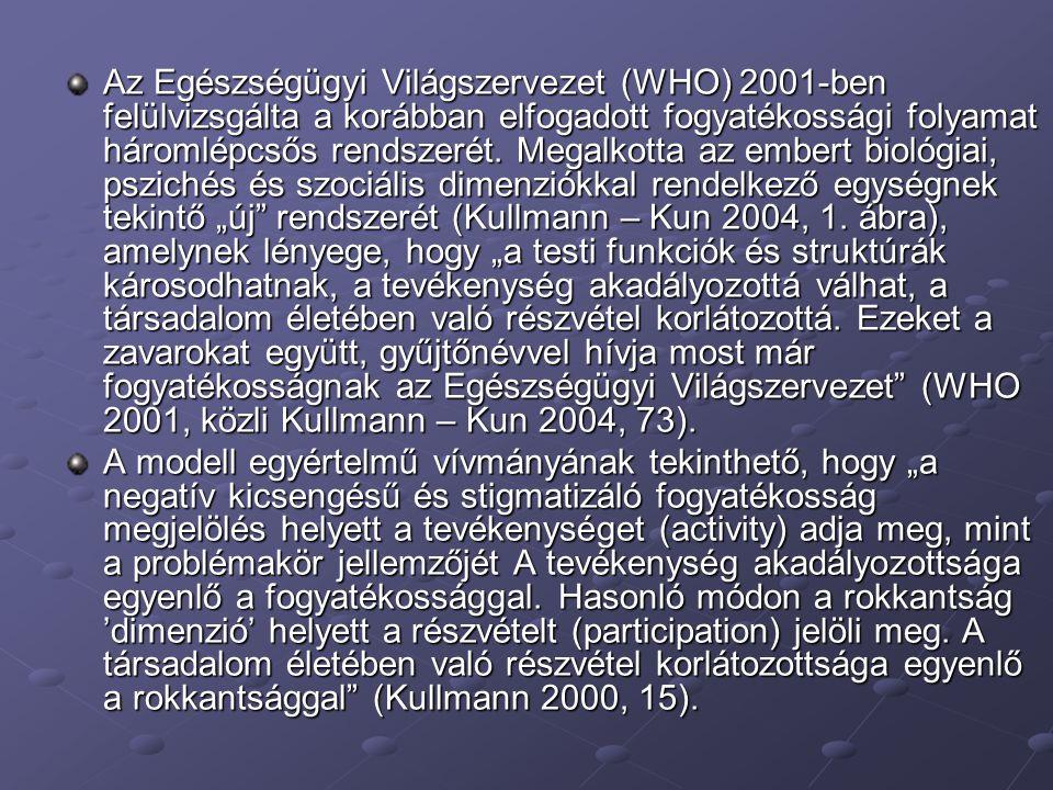Az Egészségügyi Világszervezet (WHO) 2001-ben felülvizsgálta a korábban elfogadott fogyatékossági folyamat háromlépcsős rendszerét. Megalkotta az embe