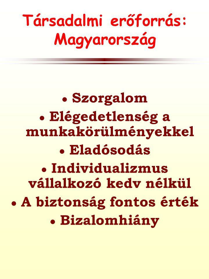 Társadalmi erőforrás: Magyarország ● Szorgalom ● Elégedetlenség a munkakörülményekkel ● Eladósodás ● Individualizmus vállalkozó kedv nélkül ● A biztonság fontos érték ● Bizalomhiány