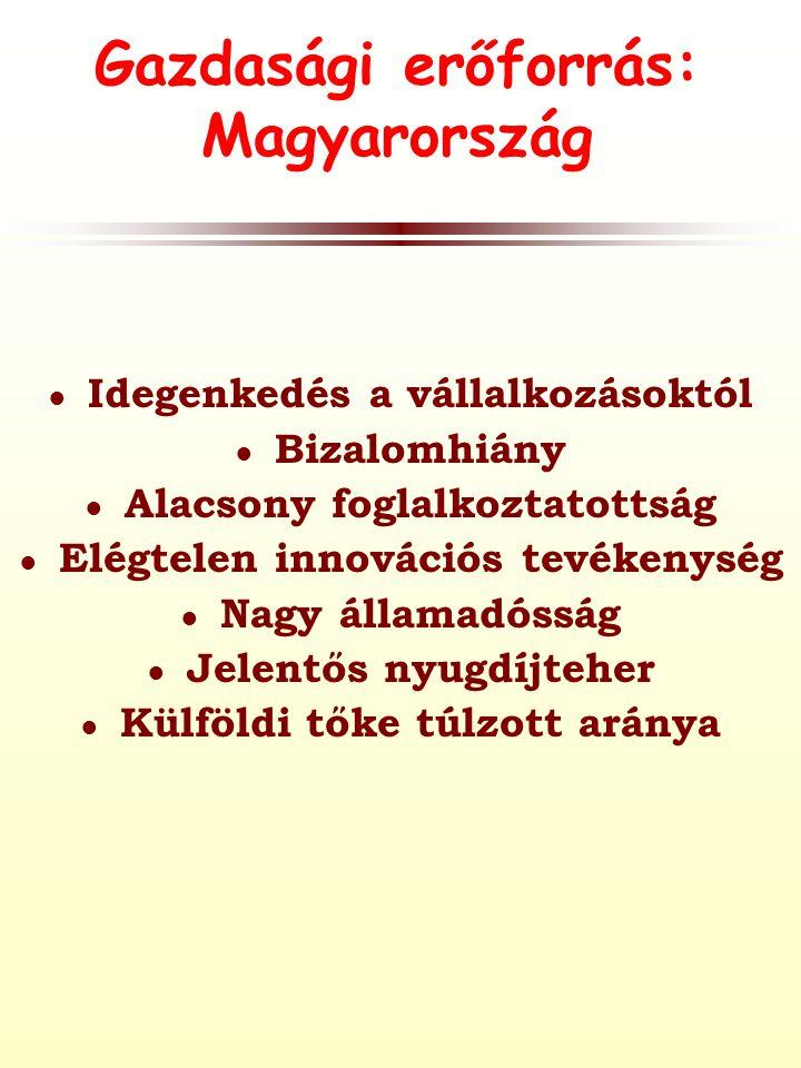 Gazdasági erőforrás: Magyarország ● Idegenkedés a vállalkozásoktól ● Bizalomhiány ● Alacsony foglalkoztatottság ● Elégtelen innovációs tevékenység ● Nagy államadósság ● Jelentős nyugdíjteher ● Külföldi tőke túlzott aránya