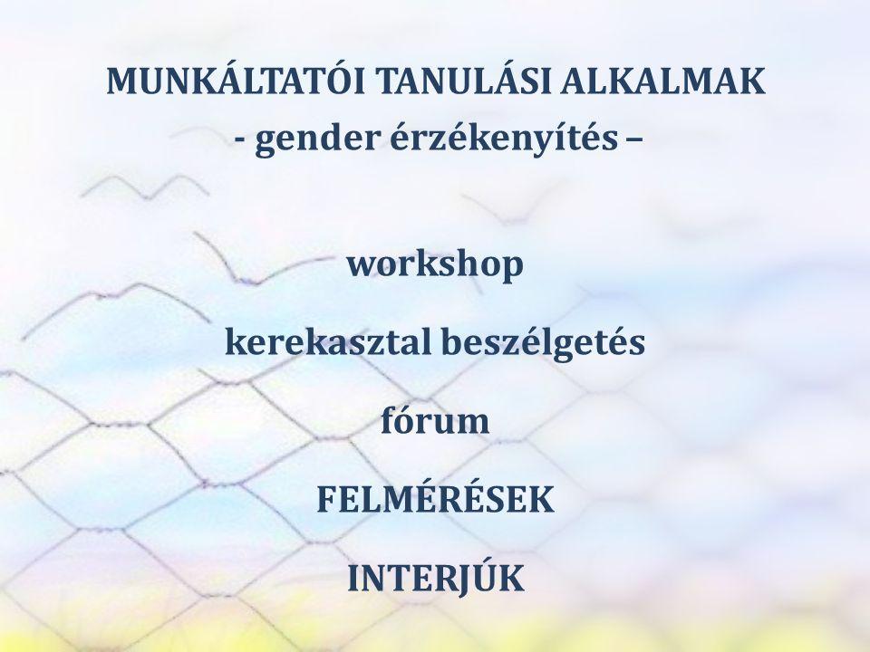 SZEREP TANMŰHELY MUNKÁLTATÓI TANULÁSI ALKALMAK - gender érzékenyítés – workshop kerekasztal beszélgetés fórum FELMÉRÉSEK INTERJÚK