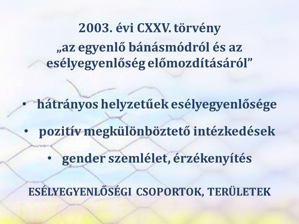 """SZEREP TANMŰHELY 2003. évi CXXV. törvény """"az egyenlő bánásmódról és az esélyegyenlőség előmozdításáról"""" • hátrányos helyzetűek esélyegyenlősége • pozi"""