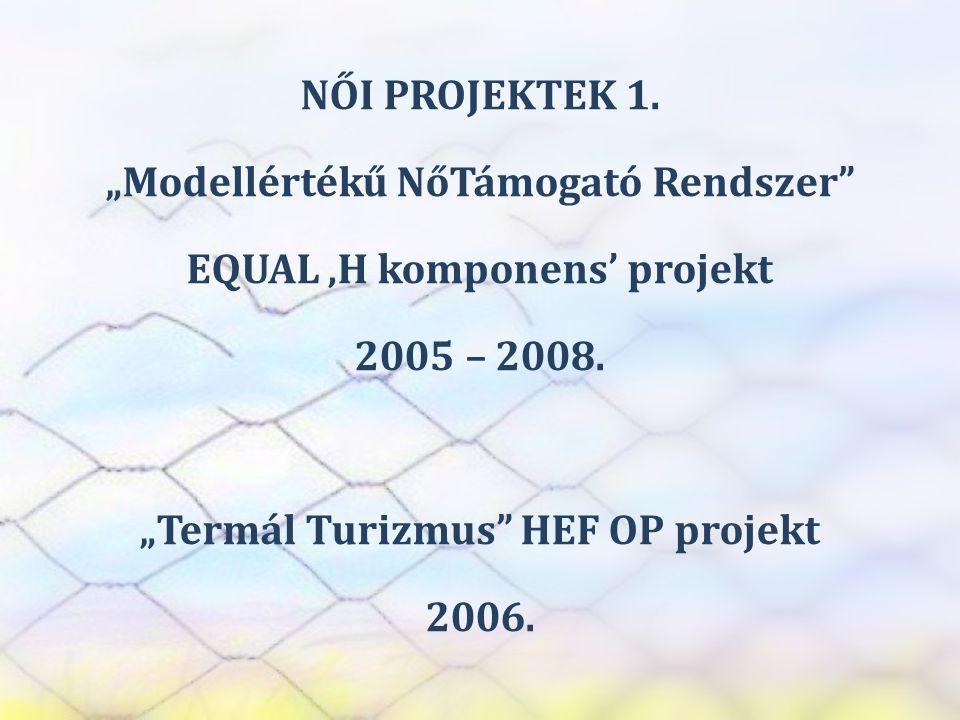 """SZEREP TANMŰHELY NŐI PROJEKTEK 1. """"Modellértékű NőTámogató Rendszer"""" EQUAL 'H komponens' projekt 2005 – 2008. """"Termál Turizmus"""" HEF OP projekt 2006."""
