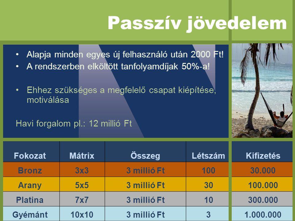 FokozatMátrixÖsszegLétszámKifizetés Bronz3x33 millió Ft10030.000 Arany5x53 millió Ft30100.000 Platina7x73 millió Ft10300.000 Gyémánt10x103 millió Ft31.000.000 •Alapja minden egyes új felhasználó után 2000 Ft.