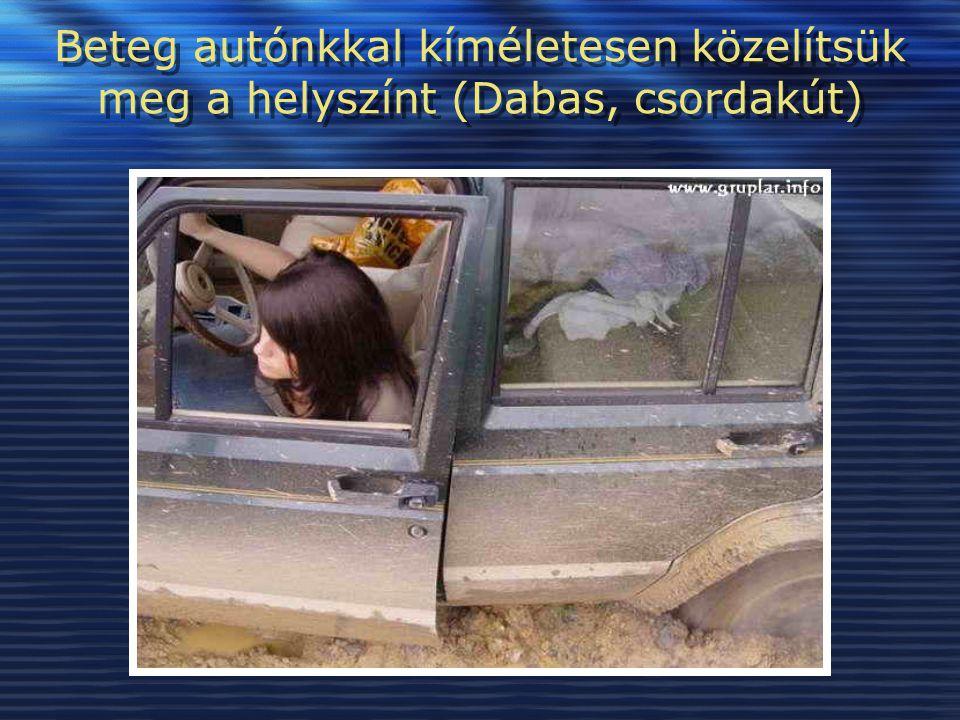 Beteg autónkkal kíméletesen közelítsük meg a helyszínt (Dabas, csordakút)