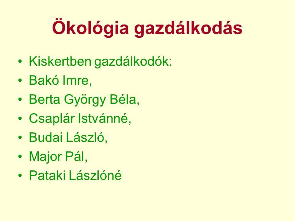 Ökológia gazdálkodás •Kiskertben gazdálkodók: •Bakó Imre, •Berta György Béla, •Csaplár Istvánné, •Budai László, •Major Pál, •Pataki Lászlóné
