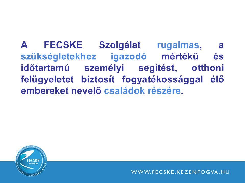 A FECSKE Szolgálat rugalmas, a szükségletekhez igazodó mértékű és időtartamú személyi segítést, otthoni felügyeletet biztosít fogyatékossággal élő embereket nevelő családok részére.