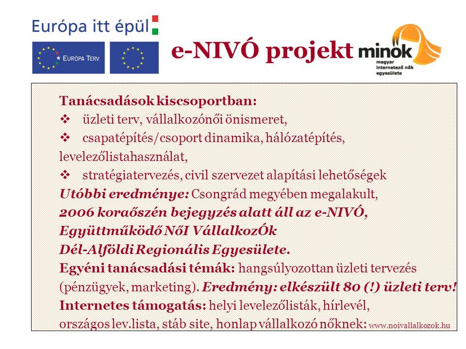 Tanácsadások kiscsoportban:  üzleti terv, vállalkozónői önismeret,  csapatépítés/csoport dinamika, hálózatépítés, levelezőlistahasználat,  stratégiatervezés, civil szervezet alapítási lehetőségek Utóbbi eredménye: Csongrád megyében megalakult, 2006 koraőszén bejegyzés alatt áll az e-NIVÓ, Együttműködő NőI VállalkozÓk Dél-Alföldi Regionális Egyesülete.