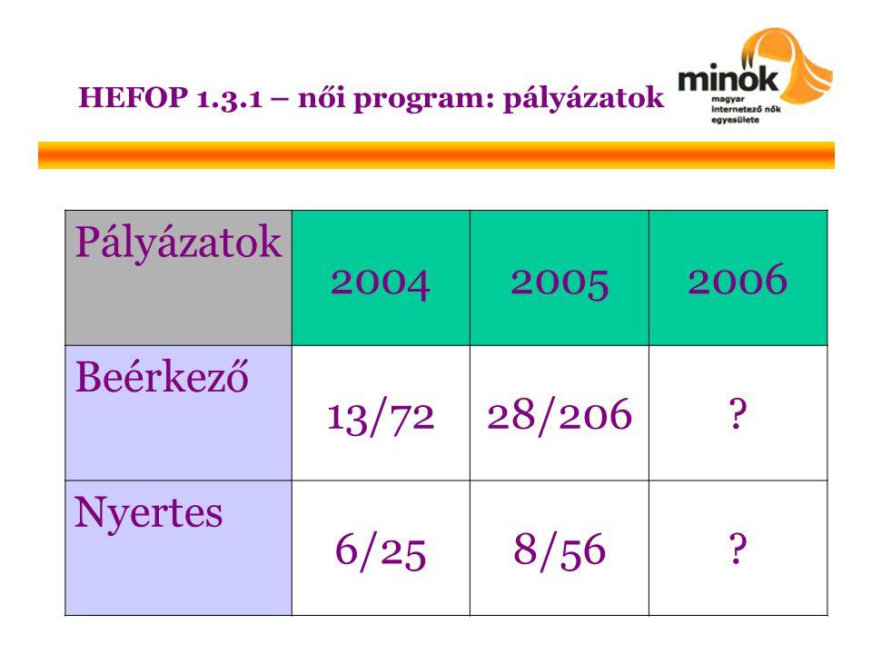 HEFOP 1.3.1 – női program: pályázatok Pályázatok 200420052006 Beérkező 13/7228/206.