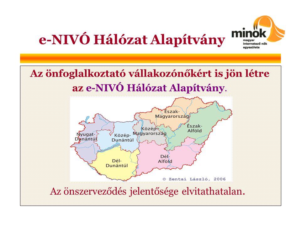 e-NIVÓ Hálózat Alapítvány Az önfoglalkoztató vállakozónőkért is jön létre az e-NIVÓ Hálózat Alapítvány.