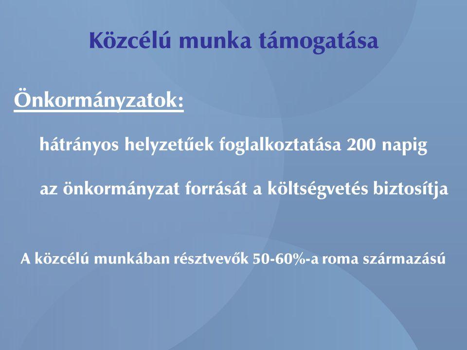 Közcélú munka támogatása hátrányos helyzetűek foglalkoztatása 200 napig Önkormányzatok: az önkormányzat forrását a költségvetés biztosítja A közcélú munkában résztvevők 50-60%-a roma származású