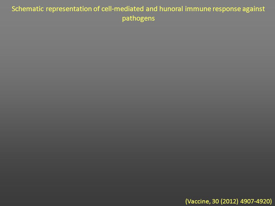 (Vaccine, 30 (2012) 4907-4920) Schematic representation of cell-mediated and hunoral immune response against pathogens