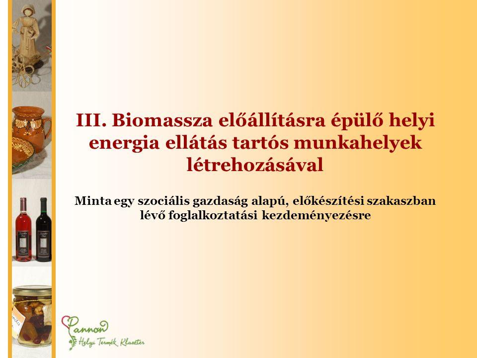 III. Biomassza előállításra épülő helyi energia ellátás tartós munkahelyek létrehozásával Minta egy szociális gazdaság alapú, előkészítési szakaszban