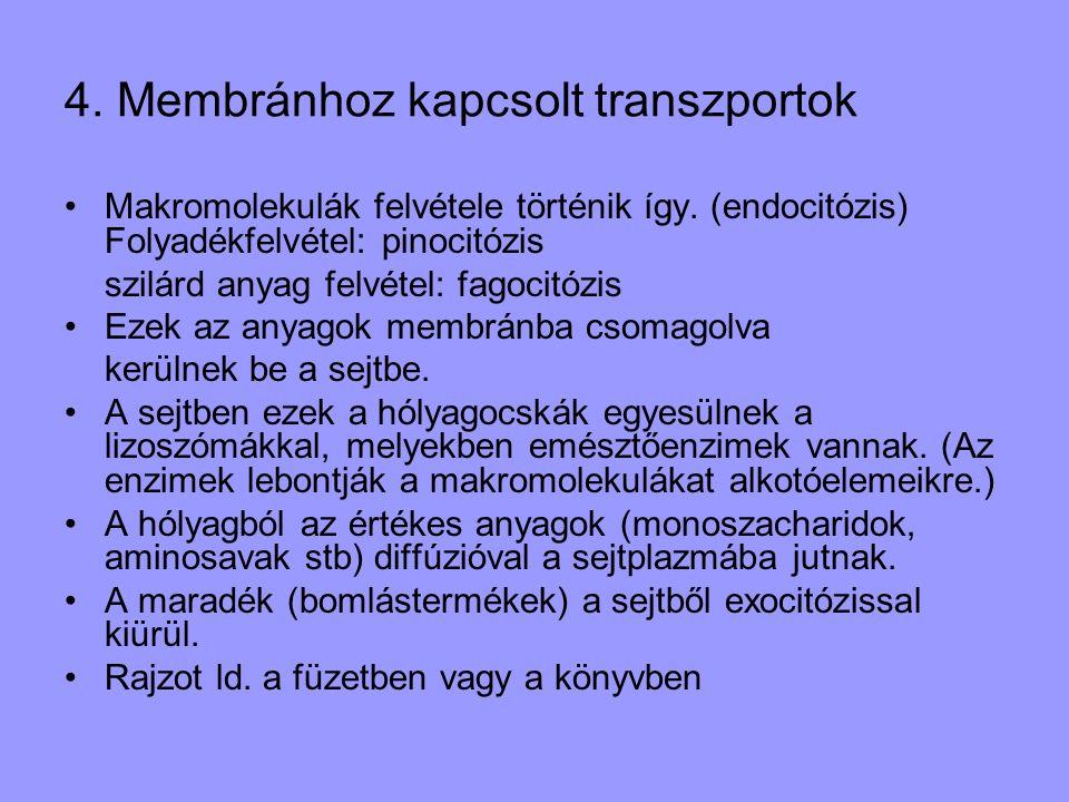 4. Membránhoz kapcsolt transzportok •Makromolekulák felvétele történik így. (endocitózis) Folyadékfelvétel: pinocitózis szilárd anyag felvétel: fagoci