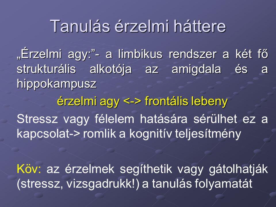 """Tanulás érzelmi háttere """"Érzelmi agy:""""- a limbikus rendszer a két fő strukturális alkotója az amigdala és a hippokampusz érzelmi agy frontális lebeny"""