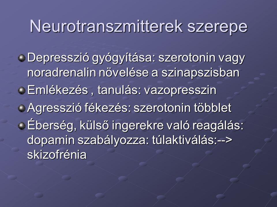 Neurotranszmitterek szerepe Depresszió gyógyítása: szerotonin vagy noradrenalin növelése a szinapszisban Emlékezés, tanulás: vazopresszin Agresszió fé