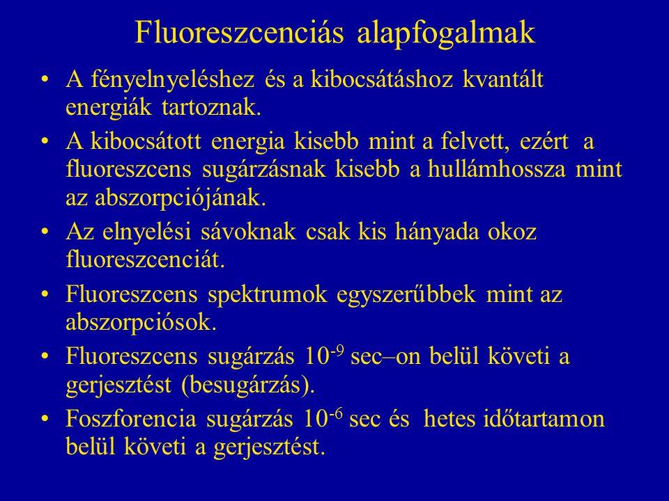 Fluoreszcenciás alapfogalmak •A fényelnyeléshez és a kibocsátáshoz kvantált energiák tartoznak.