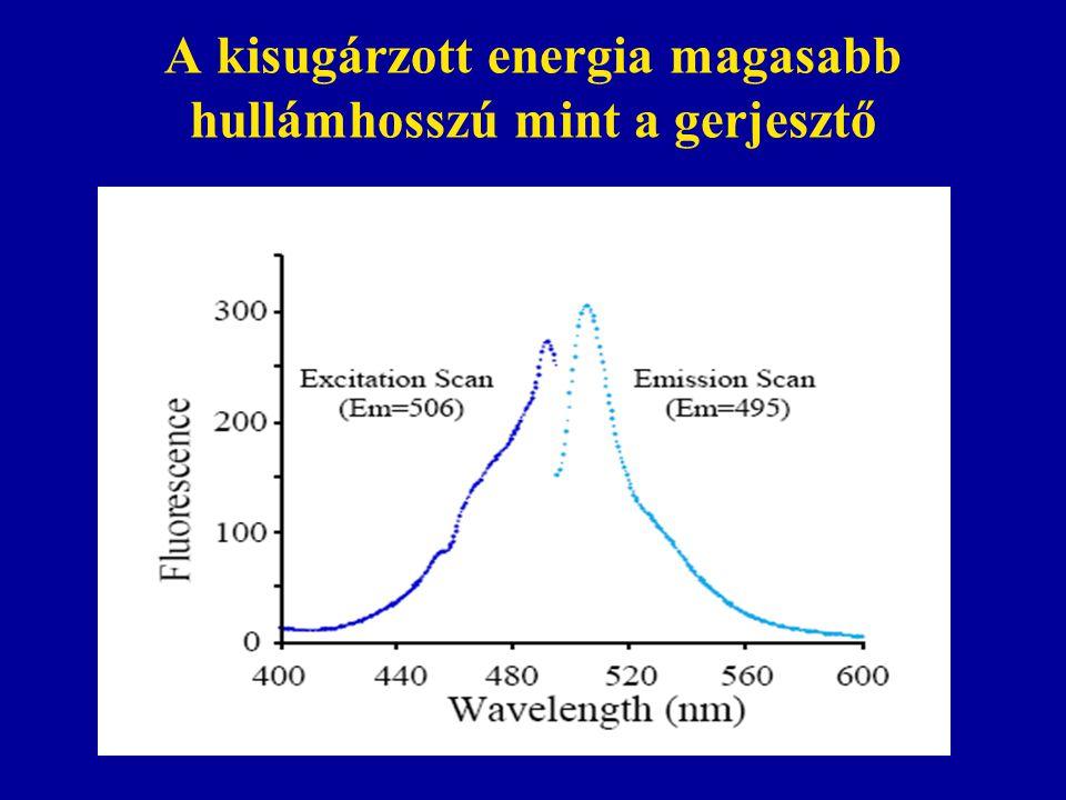 A kisugárzott energia magasabb hullámhosszú mint a gerjesztő