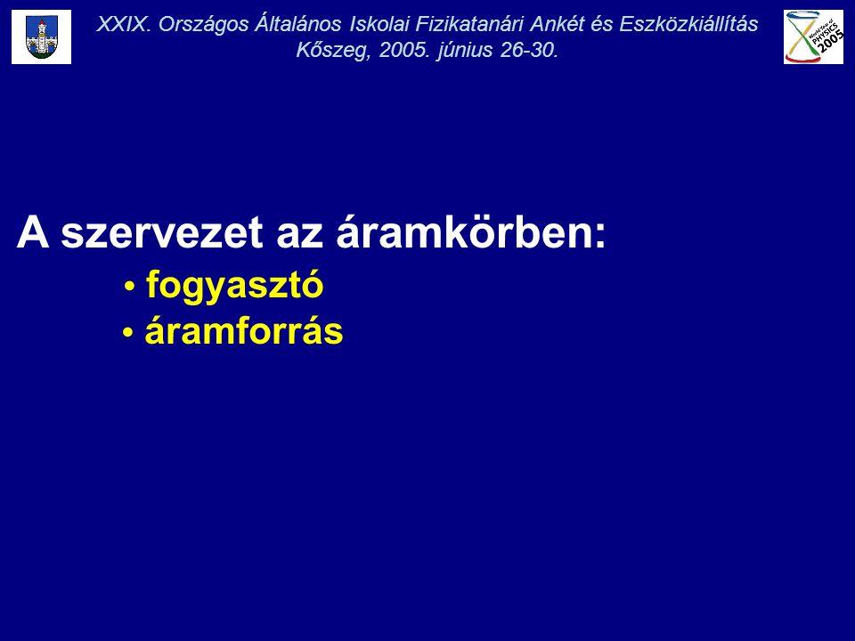 XXIX. Országos Általános Iskolai Fizikatanári Ankét és Eszközkiállítás Kőszeg, 2005. június 26-30. A szervezet az áramkörben: • fogyasztó • áramforrás