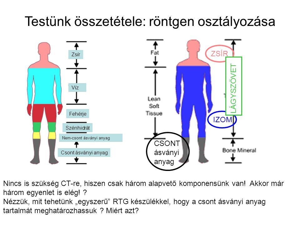 Testünk összetétele: röntgen osztályozása Nincs is szükség CT-re, hiszen csak három alapvető komponensünk van! Akkor már három egyenlet is elég! ? Néz