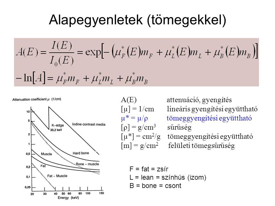 Alapegyenletek (tömegekkel) A(E) attenuáció, gyengítés [µ] = 1/cm lineáris gyengítési együttható µ* = µ/ρ tömeggyengítési együttható [ρ] = g/cm 3 sűrű