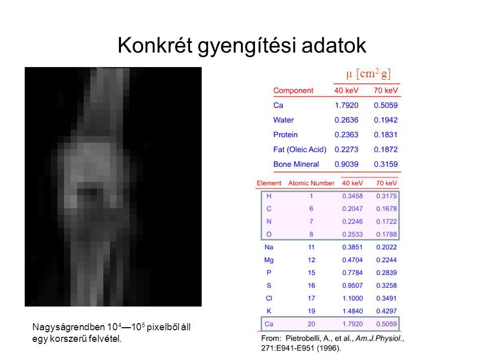 Konkrét gyengítési adatok µ [cm 2/ g] Nagyságrendben 10 4 —10 5 pixelből áll egy korszerű felvétel.