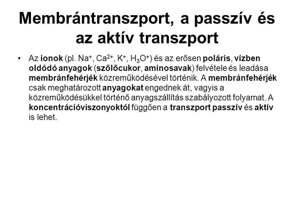 Membrántranszport, a passzív és az aktív transzport •Az ionok (pl. Na +, Ca 2+, K +, H 3 O + ) és az erősen poláris, vízben oldódó anyagok (szőlőcukor