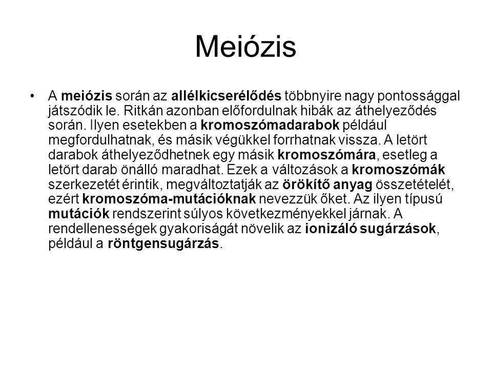 •A meiózis során az allélkicserélődés többnyire nagy pontossággal játszódik le. Ritkán azonban előfordulnak hibák az áthelyeződés során. Ilyen esetekb