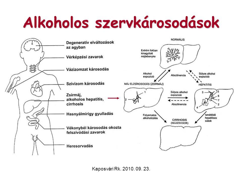 Kaposvári Rk. 2010. 09. 23. Alkoholos szervkárosodások