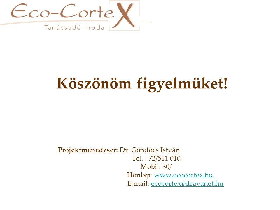 Köszönöm figyelmüket. Projektmenedzser: Dr. Göndöcs István Tel.