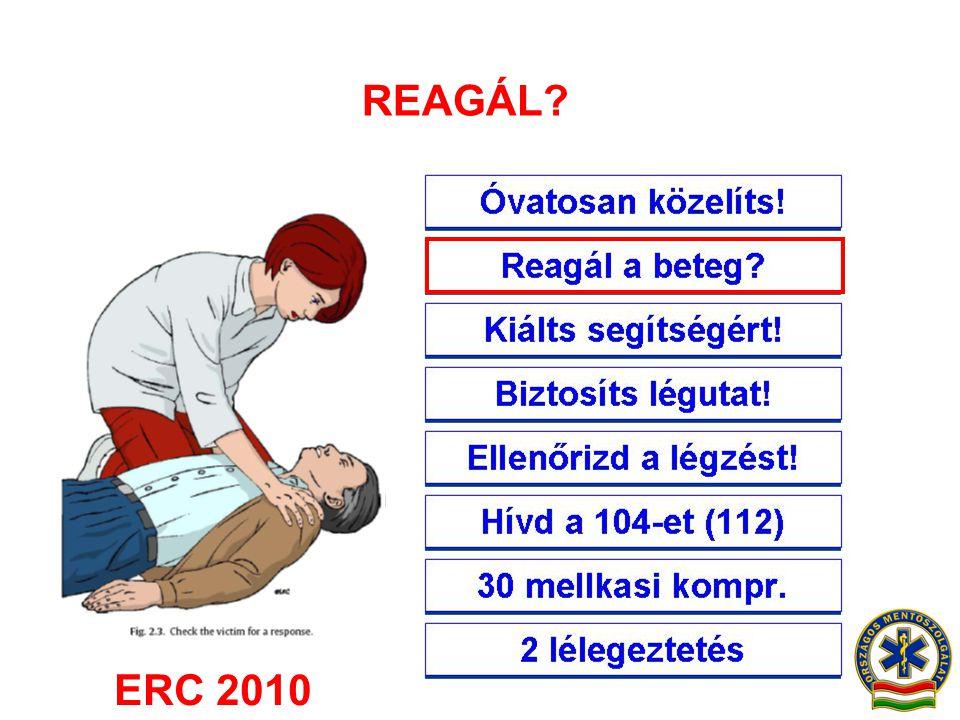 REAGÁL? ERC 2010