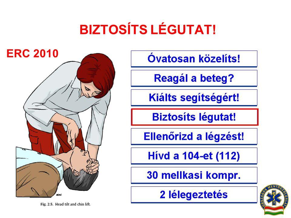 BIZTOSÍTS LÉGUTAT! Óvatosan közelíts! ERC 2010