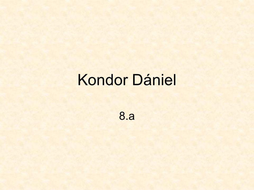 Kondor Dániel 8.a