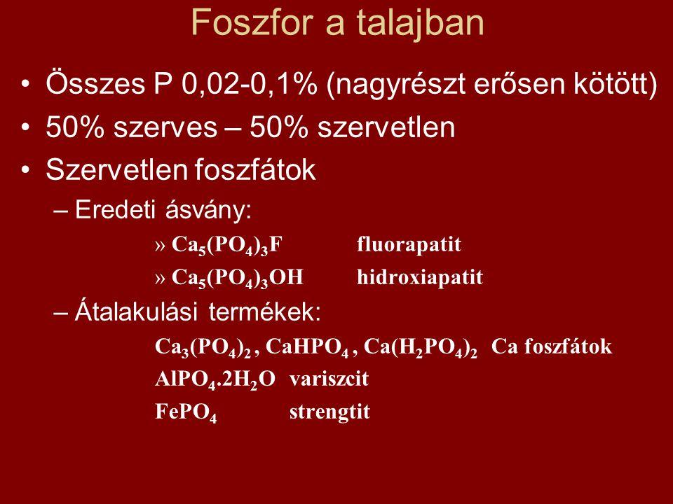 Foszfor a talajban •Összes P 0,02-0,1% (nagyrészt erősen kötött) •50% szerves – 50% szervetlen •Szervetlen foszfátok –Eredeti ásvány: »Ca 5 (PO 4 ) 3 Ffluorapatit »Ca 5 (PO 4 ) 3 OHhidroxiapatit –Átalakulási termékek: Ca 3 (PO 4 ) 2, CaHPO 4, Ca(H 2 PO 4 ) 2 Ca foszfátok AlPO 4.2H 2 Ovariszcit FePO 4 strengtit