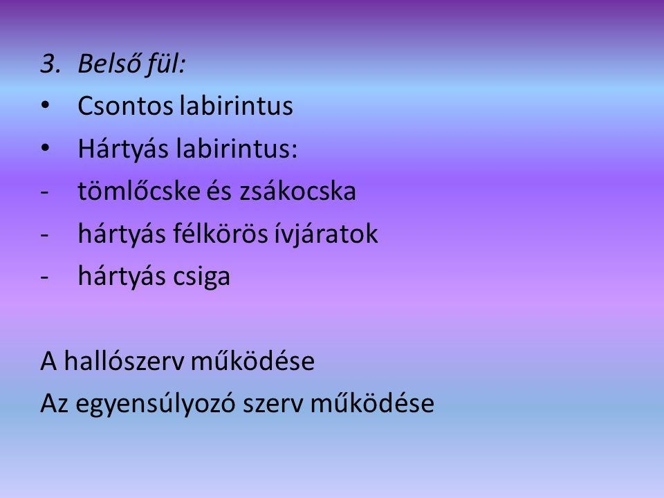 Szaglószerv • Receptorai a szaglóhámsejtek • Az I.