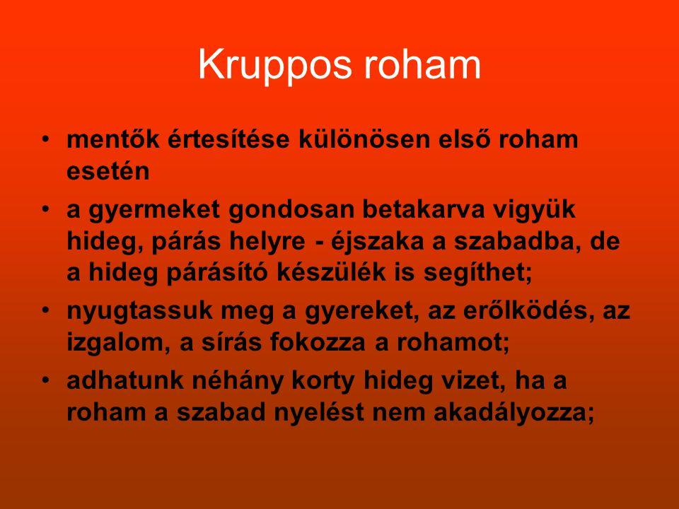Kruppos roham •mentők értesítése különösen első roham esetén •a gyermeket gondosan betakarva vigyük hideg, párás helyre - éjszaka a szabadba, de a hid