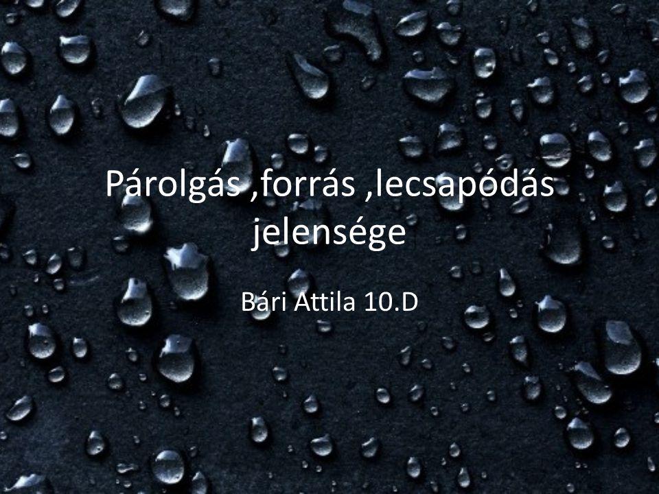 Párolgás,forrás,lecsapódás jelensége Bári Attila 10.D