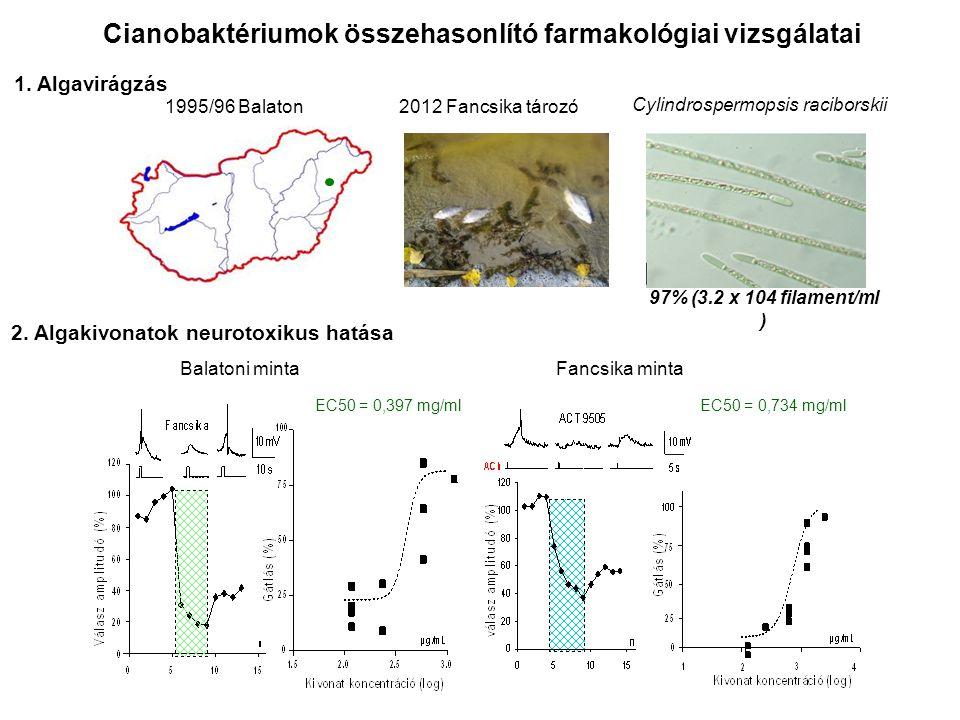 1995/96 Balaton 2012 Fancsika tározó Cylindrospermopsis raciborskii EC50 = 0,734 mg/mlEC50 = 0,397 mg/ml Cianobaktériumok összehasonlító farmakológiai