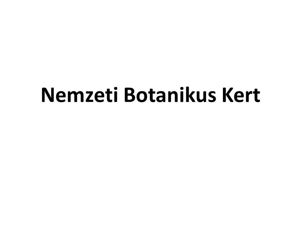 Nemzeti Botanikus Kert