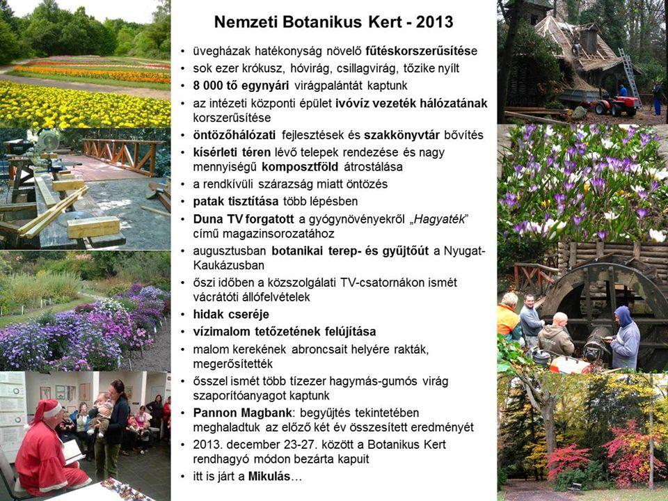 Nemzeti Botanikus Kert - 2013 •üvegházak hatékonyság növelő fűtéskorszerűsítése •sok ezer krókusz, hóvirág, csillagvirág, tőzike nyílt •8 000 tő egyny