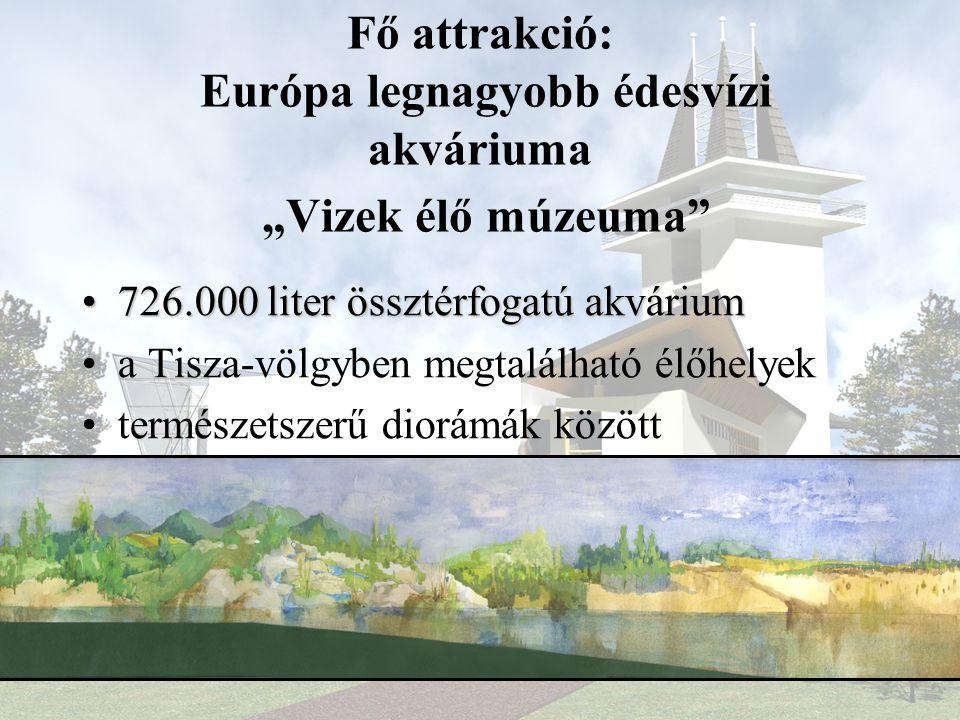 """Fő attrakció: Európa legnagyobb édesvízi akváriuma """"Vizek élő múzeuma •726.000 liter össztérfogatú akvárium •a Tisza-völgyben megtalálható élőhelyek •természetszerű diorámák között"""