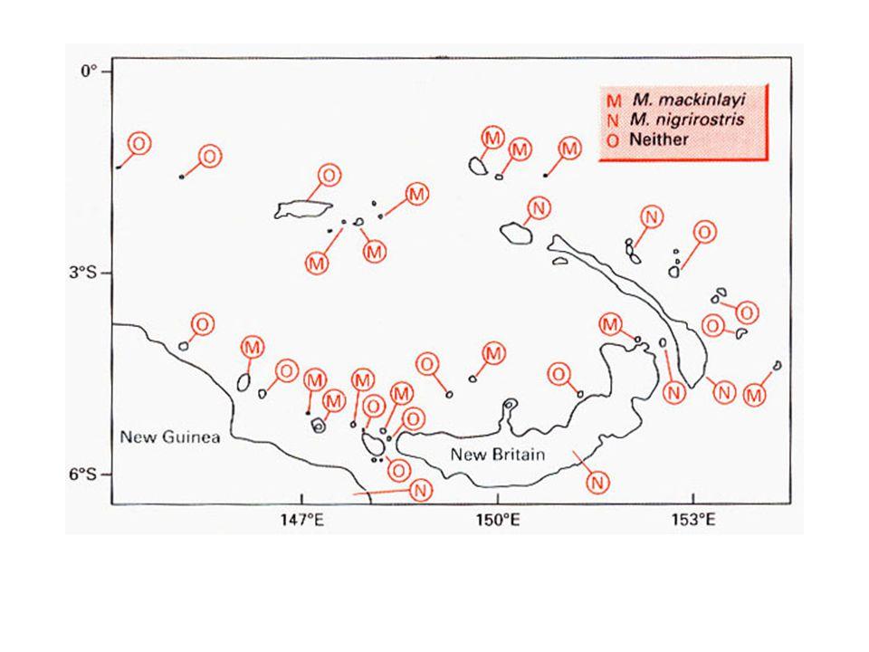 """Madarak három adatsor - Tres Marias szigetek (Mexikó partjai) - Kaliforniai Csatorna-szigetek - Galápagos-szigetek (csak pintyek) minden esetben egy sziget csak kis hányadát tartalmazta a """"forráskészlet össz-fajszámának - forráskészlet: a kontinensen élő fajok száma az első két esetben ill."""