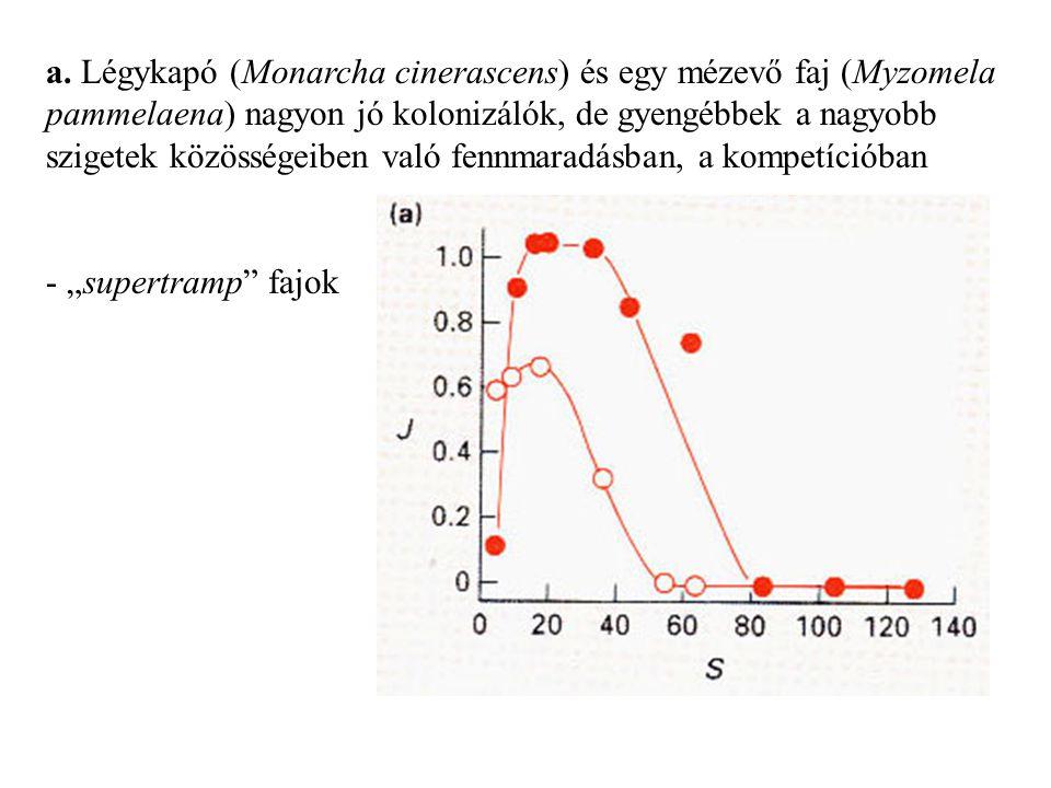 a. Légykapó (Monarcha cinerascens) és egy mézevő faj (Myzomela pammelaena) nagyon jó kolonizálók, de gyengébbek a nagyobb szigetek közösségeiben való