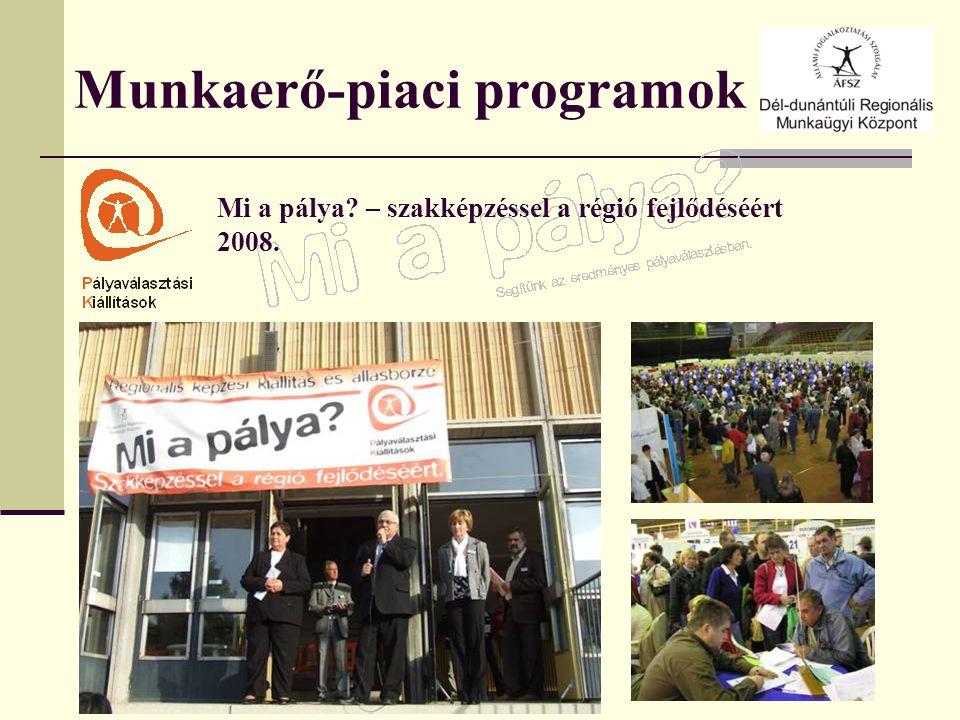 Munkaerő-piaci programok Mi a pálya – szakképzéssel a régió fejlődéséért 2008.
