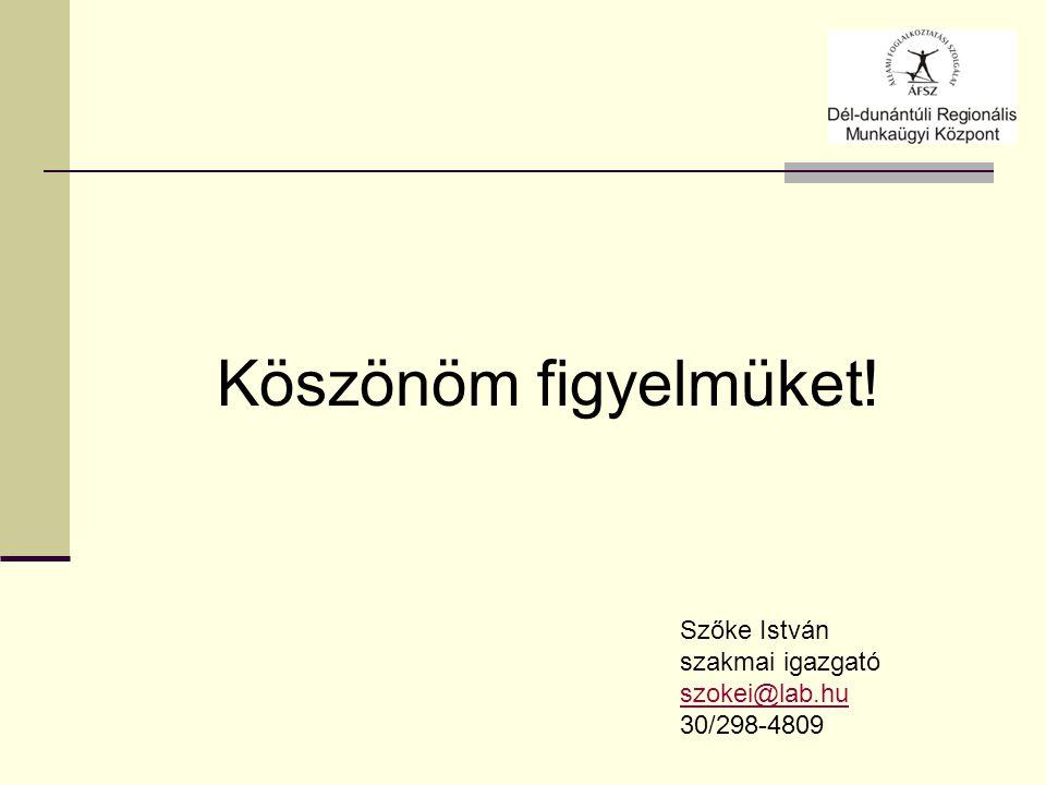 Köszönöm figyelmüket! Szőke István szakmai igazgató szokei@lab.hu 30/298-4809