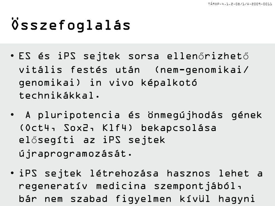 TÁMOP-4.1.2-08/1/A-2009-0011 Összefoglalás •ES és iPS sejtek sorsa ellenőrizhető vitális festés után (nem-genomikai/ genomikai) in vivo képalkotó tech
