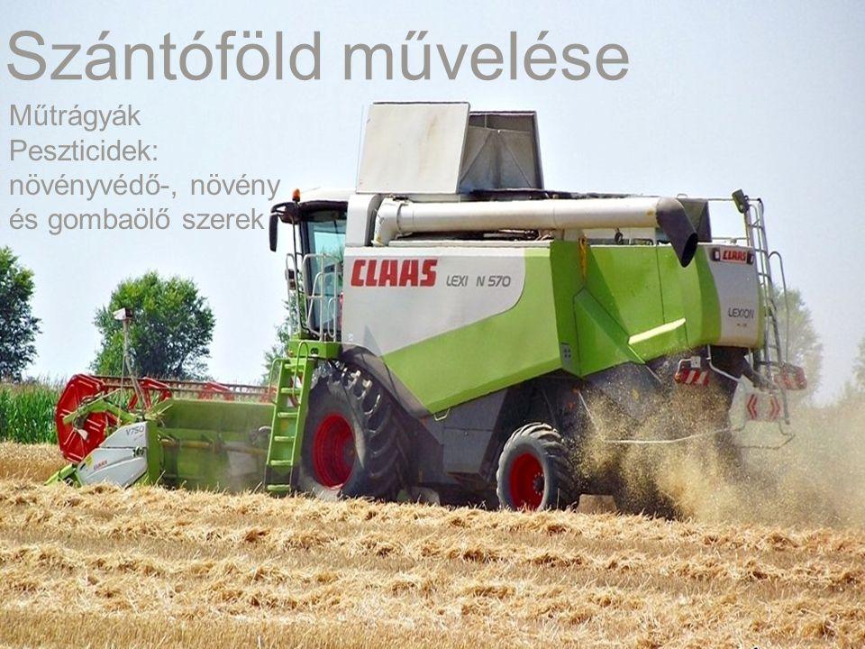 Szántóföld művelése Műtrágyák Peszticidek: növényvédő-, növény és gombaölő szerek